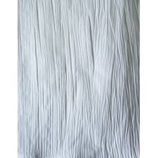 Loft Crush Silk Look Polyester Shower Curtain