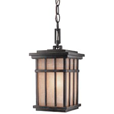 <strong>Dolan Designs</strong> Freeport 1 Light Outdoor Hanging Lantern