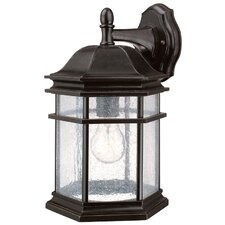<strong>Dolan Designs</strong> Barlow 1 Light Outdoor Wall Lantern
