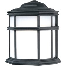 Skyler 1 Light Outdoor Wall Sconce