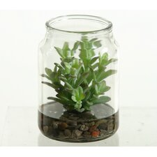 <strong>D & W Silks</strong> Donkey Tail Succulent Floor Plant in Jar