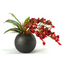 Cymbidium Orchids in Resin Ball Planter