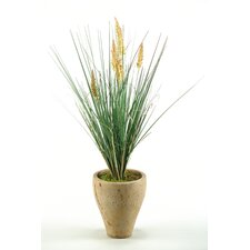 <strong>D & W Silks</strong> Onion Grass with Dogstail in Round Tepered Stone Planter