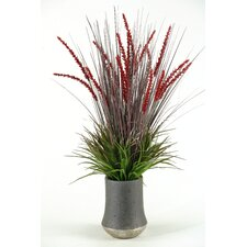 Onion and Wild Grasses in Ceramic Planter