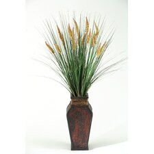 Tall Onion Dogstail Grass in Square Wooden Decorative Vase