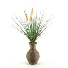 Onion Dogstail Grass in Round Decorative Vase