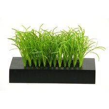 Tall Wild Grass Wooden Planter