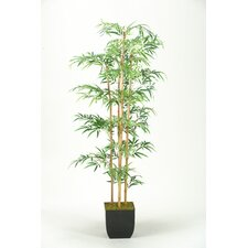 <strong>D & W Silks</strong> Mini Bamboo Tree in Planter