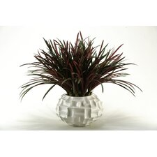 <strong>D & W Silks</strong> Areca Grass in Round Resin Pot