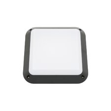 Ceduna One Light Exterior Wall Light