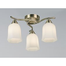 Alonso 3 Light Semi Flush Light