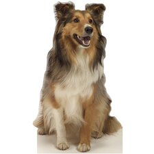 Collie Dog Life-Size Cardboard Stand-Up