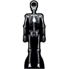 Halloween X-Ray Skeleton Cardboard Stand-Up