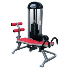 Phantom Commercial Power Ab Gym