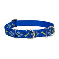"Dapper Dog 1"" Adjustable Large Dog Combo Collar"