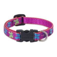 "Wing It 1/2"" Adjustable Small Dog Collar"