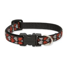"Love Struck 1/2"" Adjustable Small Dog Collar"