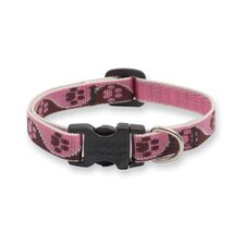 "Tickled Pink 1/2"" Adjustable Small Dog Collar"