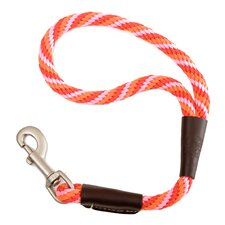 Twist Traffic Leash in Taffy