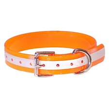 DuraFlect Standard Collar in Orange