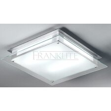 2 Light Ceiling Flush Light