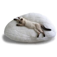 Wingdream Cat Bed