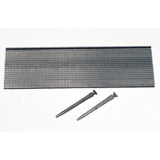 T-Head Stainless Steel Flooring Nail (Pack of 1,000)