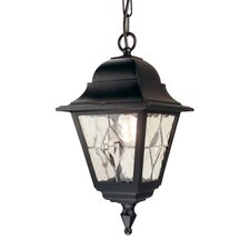 Norfolk 1 Light Hanging Lantern