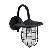 Cage 1 Light Semi-Flush Wall Light