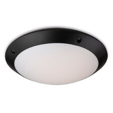 Vista 24 Light Flush Ceiling Light