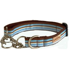 Foxy Stripe Martingale Dog Collar