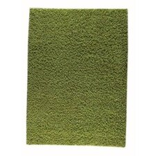 Howzen Mix Green Area Rug