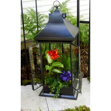 Black Tall Terrarium with Beveled Glass