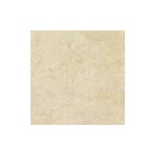 "<strong>Shaw Floors</strong> Costa D'Avorio 17"" x 17"" Floor Tile in Beige"