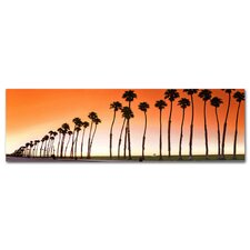 Santa Brabara Palms Photographic Print on Canvas