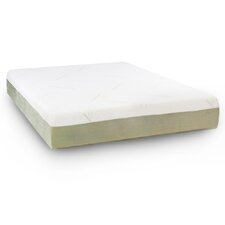 "Darling 10"" Shared Comfort Memory Foam Mattress"