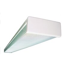 2 Light Wrapround Ceiling Light
