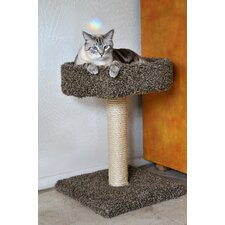Sleep Wood Scratching Post