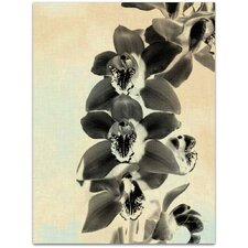 Modern Orchid Blush Panels IV James Burghardt Wall Art on Canvas