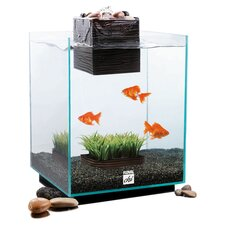 5 Gallon Fluval Chi Aquarium Kit