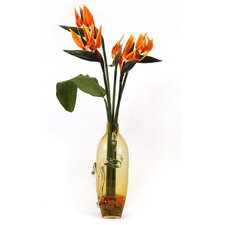 Bird of Paradise in Glass Vase