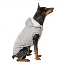 Dog Sweatshirt in Grey
