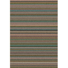 Modern Times Canyon Stucco Area Rug