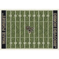 College Home Field NCAA Novelty Rug