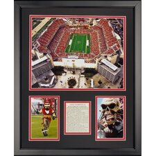 Tampa Bay Bucaneers - Raymond James Stdm Framed Photo Collage