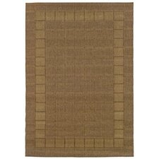 Lanai Brown/Beige Outdoor Rug