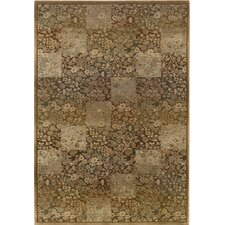 Generations Medium Green Rug