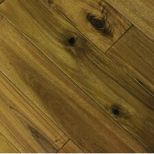 "Euro 3-5/8"" Solid Acacia Flooring in Cologne"