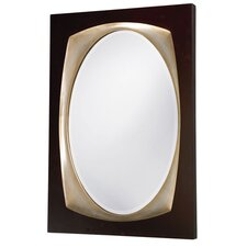 Brody Framed Mirror in Black