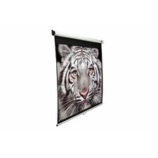 "Slow Retracting Manual Pull Down Projector Screen - 1:1 Format  99"" Diagonal"